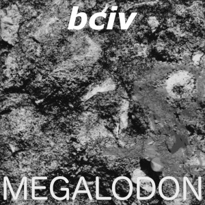 Megalodon album cover. Black and white medium format photograph possibly suggestive of a sea creature